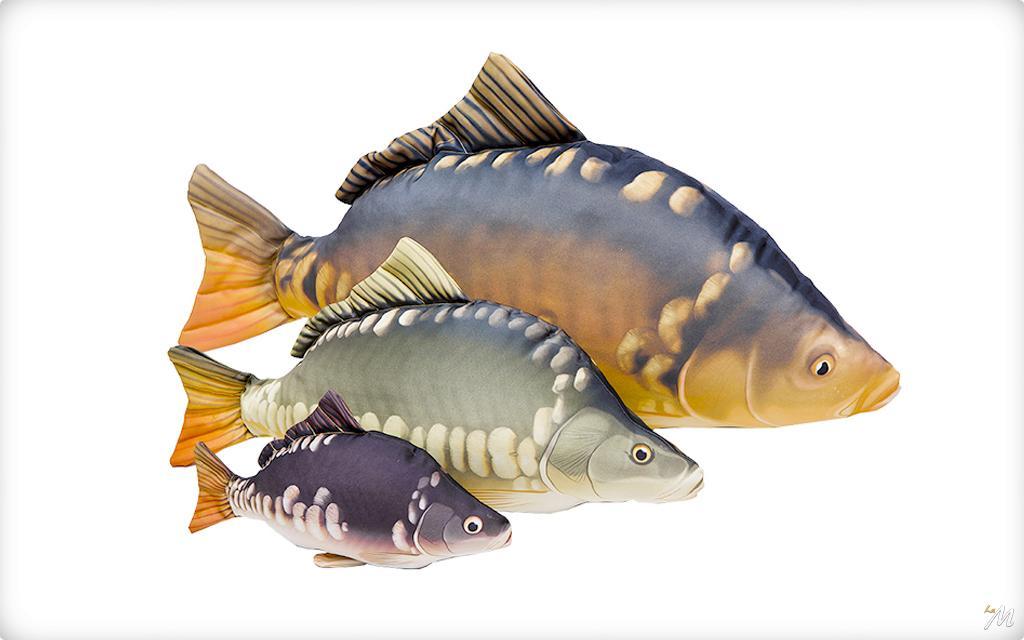 La mincio dal 1982 the fishing specialist cuscino carpa for Carpa koi prezzo